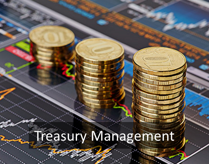 The Importance of Treasury Management